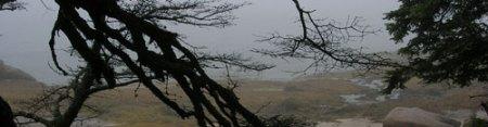 Deer Isle Maine, photo Chantal Hardy